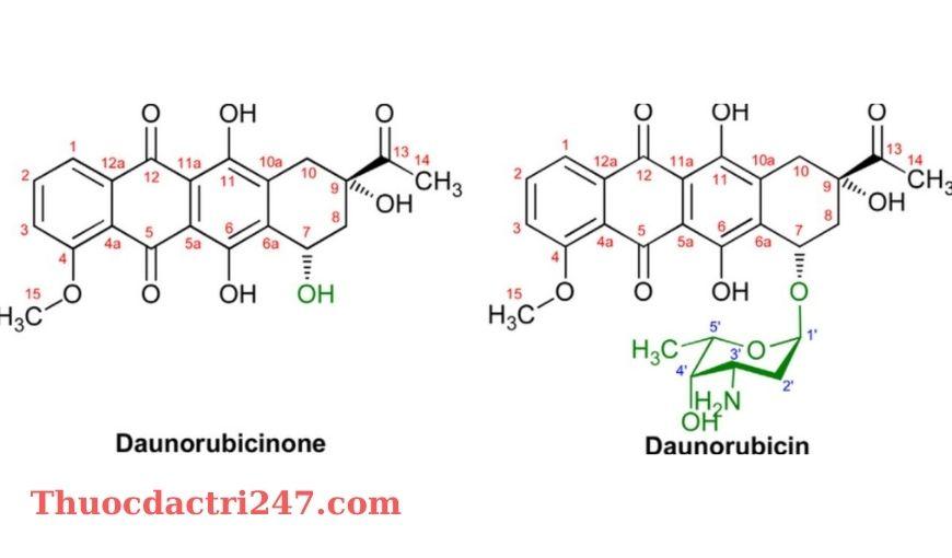 Thuoc Rubidomycin 5mg ml Daunorubicin Cong dung va cach dung thuoc1